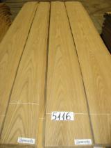 Sliced Veneer - Olmo Americano, Flat cut, plain, Natural Veneer