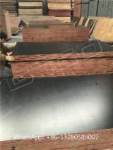 Black film faced marine plywood