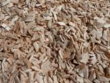 Danemark - Fordaq marché - Vend Plaquettes Forestières