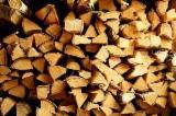 Firewood - Chips - Pellets Supplies - All species Firewood/Woodlogs Not Cleaved in Belarus