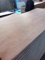 Platten und Furnier - Natursperrholz