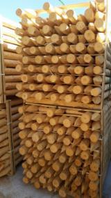 Prodotti Per Il Giardinaggio In Vendita - Pino (Pinus sylvestris) - Legni rossi, Recinti - Pannelli