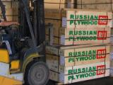 Plywood - Russian Birch Faces & Core Natural Plywood 5x5 / 1525x1525 mm