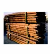 Cylindrical Trimmed Round Wood, Mongolian Scotch Pine