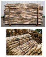 Hardwood  Logs - 4/14 cm Chestnut  Cylindrical Trimmed Round Wood Italy