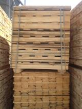 Sawn Timber for sale. Wholesale Sawn Timber exporters - 100 m3 per month, Fir (Abies alba, pectinata)