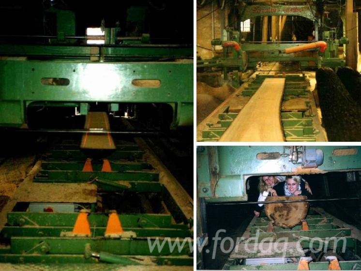 Used-Schulte-2005-Solid-Wood-And-Panel-Sawing-Machines---Other-For-Sale-in