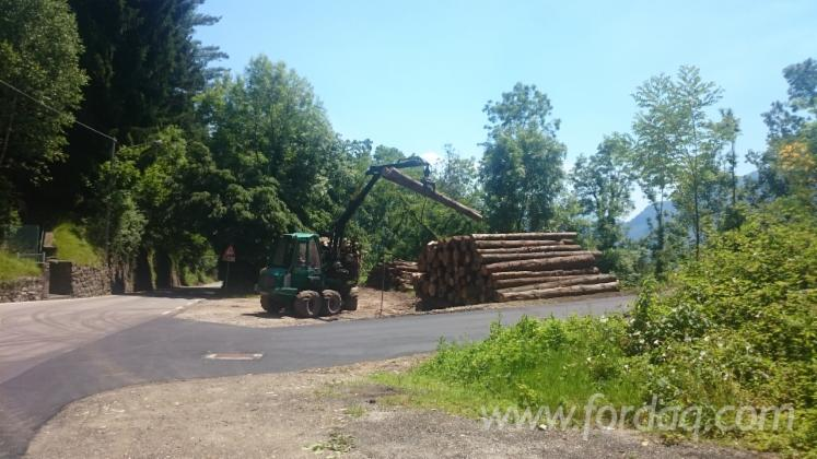 Used-Gremo-2009-Forwarder-in