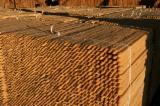 Softwood  Sawn Timber - Lumber Pine Pinus Sylvestris - Redwood - 30+ mm, Air dry (AD), Pine (Pinus sylvestris) - Redwood, Stave woods