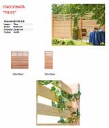 Mongolische Waldkiefer (Pinus Sylvestris), Zäune - Wände