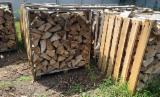 Firelogs - Pellets - Chips - Dust – Edgings - Beech (Europe) in Poland Firewood/Woodlogs Not Cleaved 15 mm