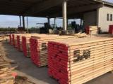 European White Ash Planks (boards)  F 1 in Tunisia