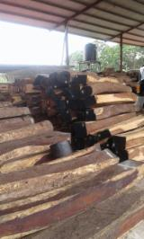 Tropical Wood  Logs - 2 sides clear, 200 mm, Cocobolo Palissander, Industrial Logs