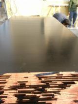 21 mm Poplar Formwork / Shuttering Plywood