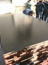 Plywood Poplar For Sale - 18mm plywood brown fim poplar core WBP Glue