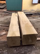 Tropsko Drvo  Trupci - Square Logs, Doussie (Afzelia, Lingue, Apa, Chanfuta)