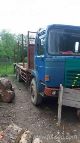 Camion-pt-transport-busteni-----18-000-lei