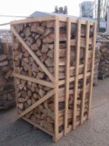 Buy Or Sell  Firewood Woodlogs Cleaved Romania - Beech  Firewood/Woodlogs Cleaved 10+ cm