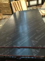 Plywood For Sale - Film Faced Plywood, Black Film, Hardwood Core, WBP Glue