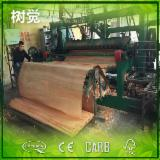 Rotary Cut Veneer For Sale - FSC Eucalyptus Veneer