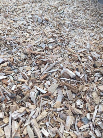 Uses For Beech Wood ~ Beech chips