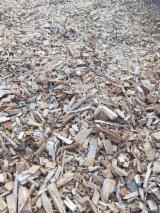 Дрова - Пеллеты - Щепа - Пыль - Отходы Для Продажи - Бук Щепа От Лесоотходов Румыния