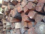 Tropical Logs for sale. Wholesale Tropical Logs exporters - Pyinkado Timber - Xilya dolabriformis Timber - Camxe Timber from Cambodia