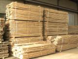 Laubholz  Blockware, Unbesäumtes Holz - Loseware, Sycamore (American)(Platanus occidentalis)