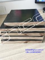 Plywood - 1250*2500*21mm Birch film faced plywood
