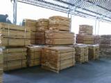 Beech (Europe) Planks (boards)  in Bosnia - Herzegovina