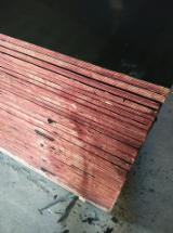 15*1220*2440MM Black Film Faced Plywood First Grade