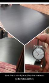 Vend Contreplaqué Filmé (Noir) 9; 10; 12; 15; 18; 21 mm Chine