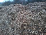 null - All Species Wood Chips From Used Wood -- mm