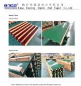 Plywood Supplies - Column FORMWORK