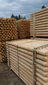 Softwood Logs Suppliers and Buyers - Machine rounded poles/palisades