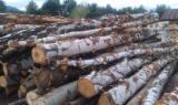 Firelogs - Pellets - Chips - Dust – Edgings - Birch (europe) Firewood/woodlogs Cleaved 30 mm
