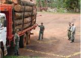 Waldgebiete Zu Verkaufen - Spanien, Cedar