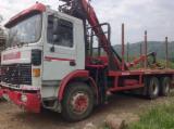 Camion - Macara forestiera - 12 000 €, negociabil