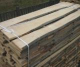 Laubholz  Blockware, Unbesäumtes Holz Zu Verkaufen Ukraine - Blockware, Buche/Eiche