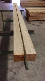Mouldings - Profiled Timber - Larch (Larix Spp.) Profiled Scantlings in Germany