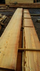 Softwood  Unedged Timber - Flitches - Boules For Sale - Siberian Larch Boules 20 mm Germany