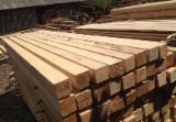 Softwood  Sawn Timber - Lumber - Squares, Pine (Pinus sylvestris) - Redwood