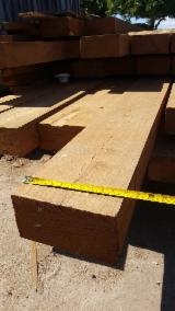 African teak supply from Mozambique