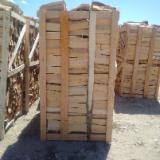 beech wood pallets
