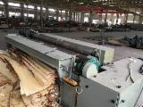 Vender Fatiador De Folheado / Lâminas GTCO Novo China