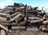 Buy Or Sell  Firewood Woodlogs Cleaved Romania - Firewood/Woodlogs Cleaved -- mm
