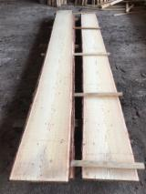 FSC Certified Unedged Timber - Boules - Unedged boards of Siberian larch , fresh class 0/1 FSC