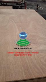 null - Sapele/sapelli bb/cc face/back plywood, sapele plywood, commercial plywood