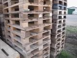 All Coniferous Pallets And Packaging importers and wholesale buyers - Used Euro Pallets