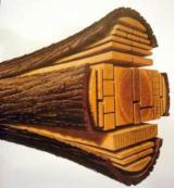 Servicii Cherestea de vanzare - Procesare lemn , gater mobil